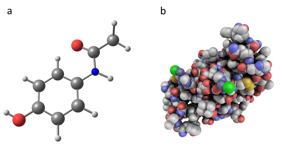 A picture of the chemical molecules paracetamol and insulin. Paracetamol is an artificially developed chemical molecule with a much simpler structure than insulin.