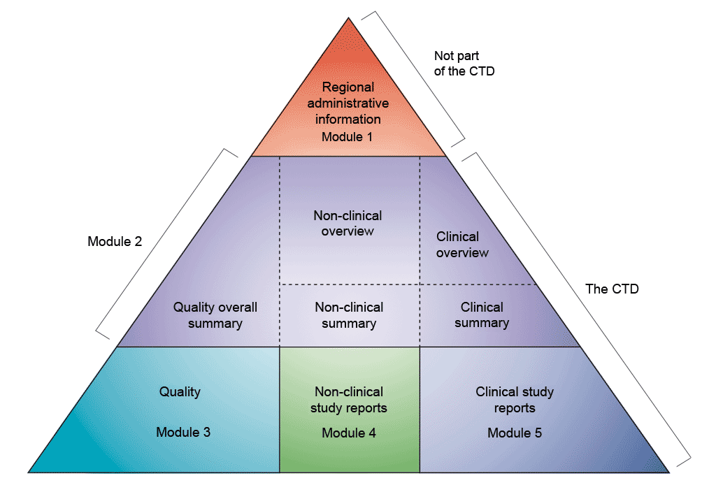 Diagrammatic representation of non-clinical development as part of the CTD modules.