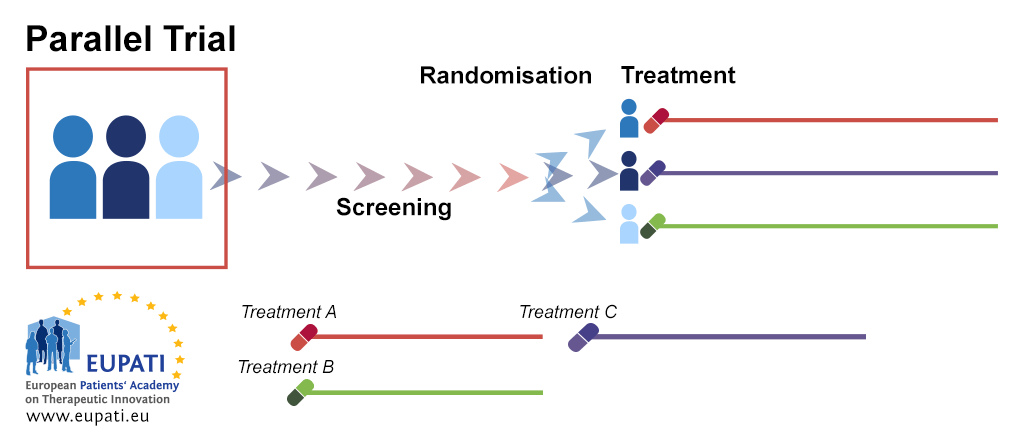 A diagram depicting the parallel group trial design. After screening, patients are randomised into separate treatment groups. They remain in these treatment arms for the duration of the trial, analysis, and follow-up activities.