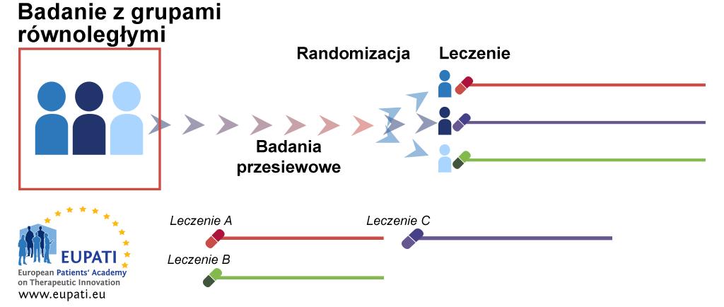Schemat przedstawiający schemat badania z grupami równoległymi. Po badaniu przesiewowym pacjenci są przydzielani losowo do odrębnych grup leczenia. W tych grupach pozostają przez cały okres trwania badania, analizy i działań kontrolnych.