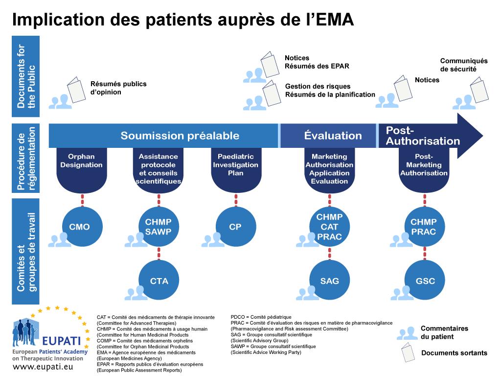 Les patients peuvent s'engager de différentes façons auprès de l'EMA tout au long de la procédure réglementaire.