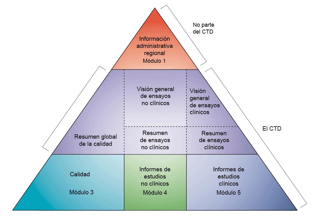Desarrollo preclínico de los módulos del CTD. Diagrama en el que se representa el desarrollo preclínico como parte de los módulos del CTD. Los módulos del CTD se representan aquí en forma de pirámide dividida en tres niveles. La parte superior de la pirámide no forma parte del CTD, pero representa el módulo 1, de información administrativa regional. En el segundo nivel se representa el módulo 2. Se divide en tres secciones: En la sección izquierda se incluye un resumen general de la calidad, en la parte central se incluyen una descripción general y un resumen de la información preclínica, y en la parte derecha se incluyen una descripción general y un resumen de la información clínica. La parte inferior de la pirámide se divide a su vez en tres secciones, cada una de las cuales representa un módulo individual. En la parte izquierda se incluye el módulo 3, sobre la calidad. En la parte central se incluye el módulo 4, sobre los informes de los estudios preclínicos. Finalmente, en la parte derecha se incluye el módulo 5, sobre los informes de los estudios clínicos. Por consiguiente, el desarrollo preclínico ocupa la parte central de la pirámide.