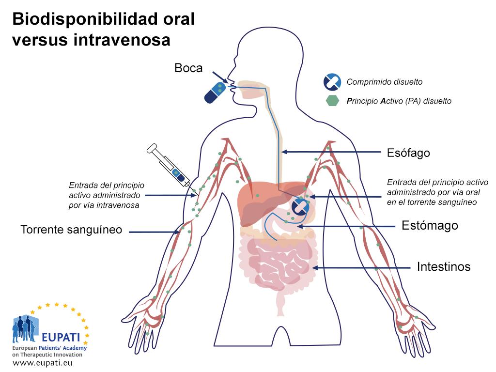 Ilustración esquemática que muestra la absorción de una cápsula administrada oralmente frente a la de una inyección directa al flujo sanguíneo (inyección intravenosa). Tras llegar al estómago, la cápsula se transporta al intestino delgado, donde continúa el proceso de absorción.