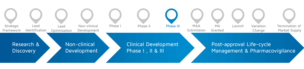 A visual representation of in which phase of medicines research and development process an activity takes place with phase III highlighted.