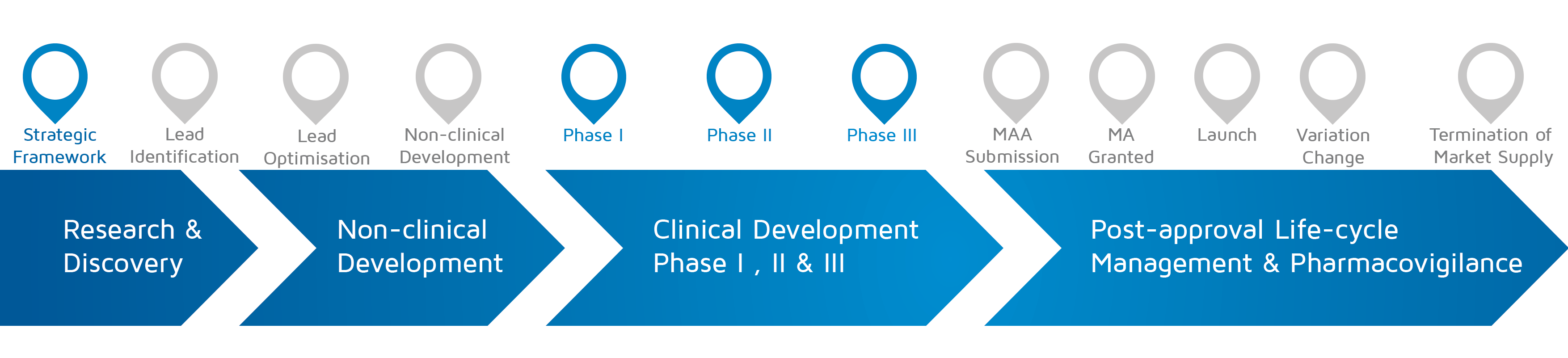 A visual representation of in which phase of medicines research and development process an activity takes place with strategic framework and Phase I-II-III highlighted.