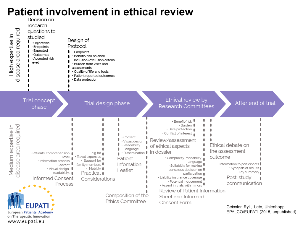 A roadmap of where patient involvement may occur in ethical review
