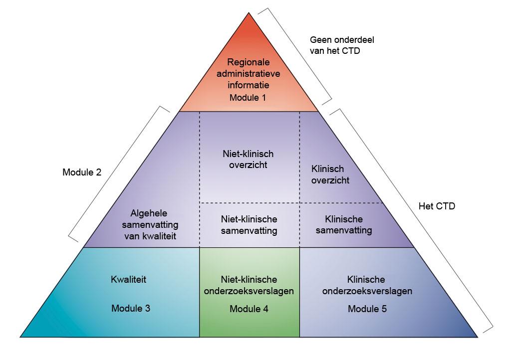 Niet-klinische ontwikkeling in CTD-modules. Bewerkt naar ICH CTD (zie referentie 1)