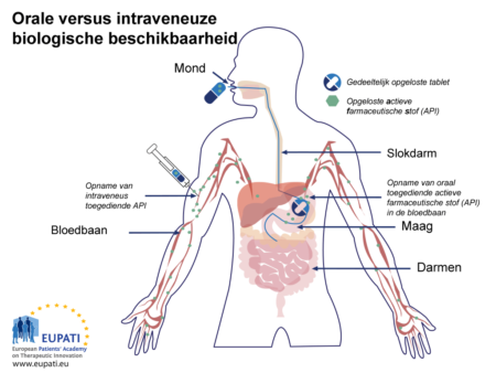 Een schematische voorstelling van het verschil in absorptie tussen een oraal toegediende tablet en een intraveneuze injectie rechtstreeks in de bloedbaan. Een gedeeltelijk opgeloste tablet reist door de slokdarm naar de maag; in de maag lost de tablet (mét de actieve farmaceutische stof) volledig op. De actieve farmaceutische stof verplaatst zich vervolgens naar de bloedbaan. Een intraveneuze injectie daarentegen plaatst de actieve farmaceutische stof rechtstreeks in de bloedbaan.