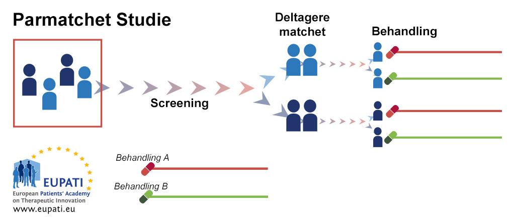 Et diagram, der viser et klinisk forsøg med parret design. Efter screeningen sammensættes deltagerne i par. I hvert par bliver den ene deltager randomiseret til behandling A, mens den anden randomiseres til behandling B.