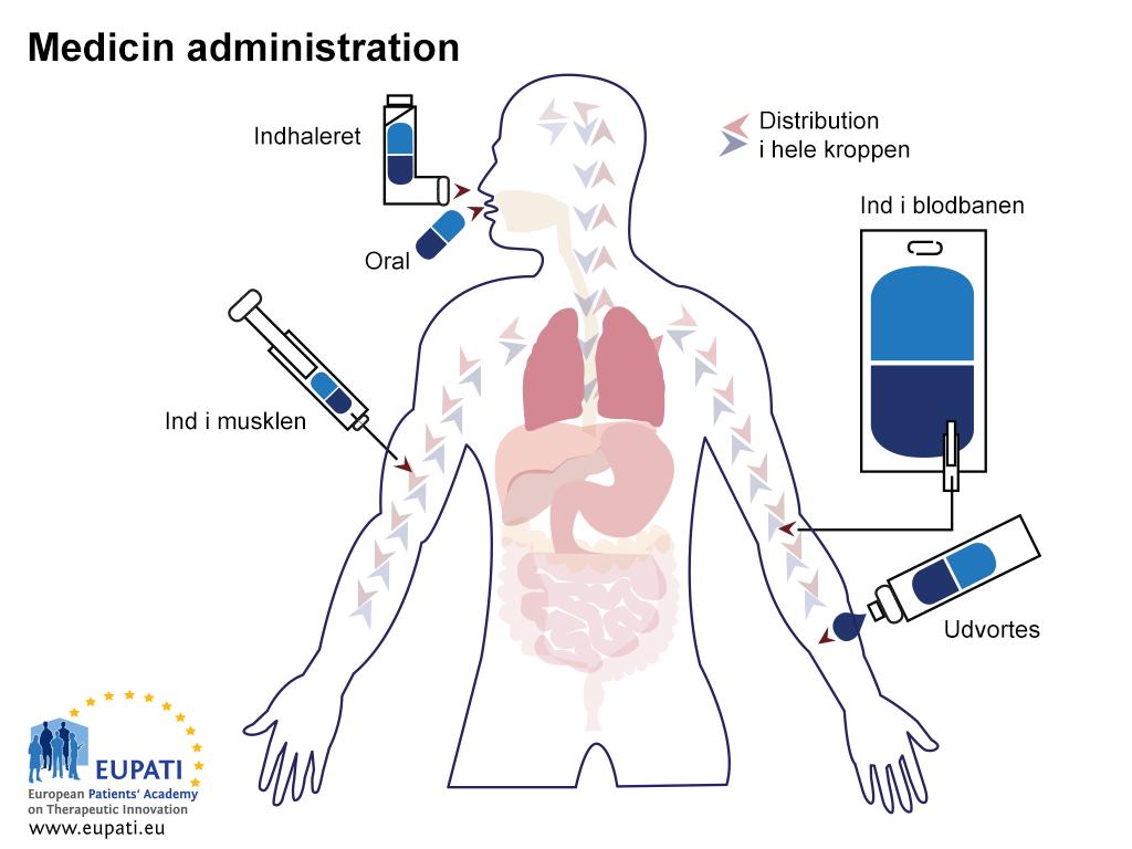 Lægemidler kan komme ind i kroppen og – allermest væsentligt – i blodet på flere forskellige måder: oralt, intravenøst eller via inhalation.